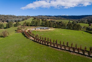 1032 Georges Creek Road, Georges Creek, Vic 3700