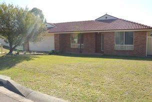 3 James House Close, Singleton, NSW 2330