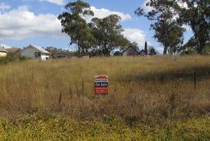 25 Ellerston Street, Moonan Flat, NSW 2337