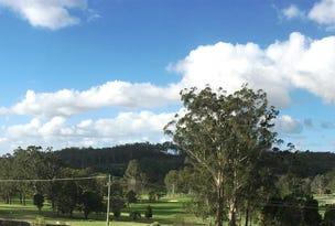 Lot 316, Lot 316 Red Cedar Ridge, Kew, NSW 2439