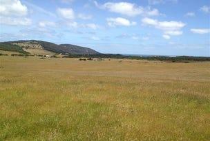Corner Palana & North East River Road, Flinders Island, Tas 7255