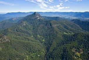 501 Mount Warning Road, Mount Warning, NSW 2484