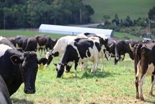 109 Bartletts Road, Mawbanna, Tas 7321