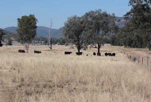 207 Beardy River Road, Dumaresq Valley, NSW 2372