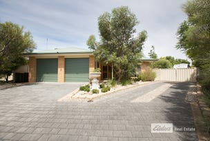 6 PALLANT CLOSE, Naracoorte, SA 5271