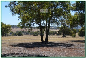 Lot 108, 10 Cycad Crescent, Wundowie, WA 6560