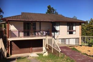 9A Cullen Pl, Minto, NSW 2566