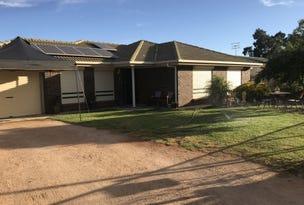 22 Murray Price Drive, Renmark, SA 5341