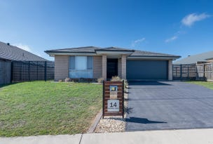 14 Dragonfly Drive, Chisholm, NSW 2322
