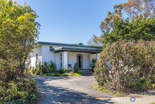 13B Batman St, Braddon, ACT 2612