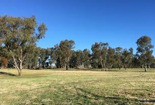 Lot 119, 207 Riverside Drive, Narrabri, NSW 2390