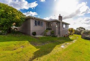 16 Frances Street, Bridport, Tas 7262