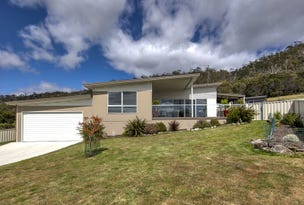 3 Sea Eagle Drive, Bicheno, Tas 7215