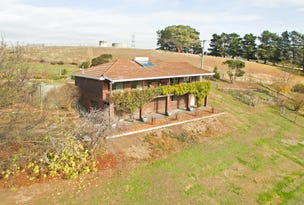 572 Back River Road, Magra, Tas 7140