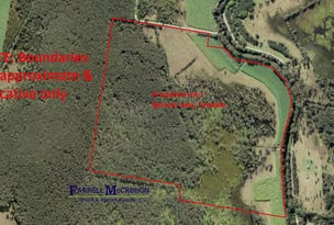 Proposed Lot 1 Byrons Lane, Tyndale, NSW 2460