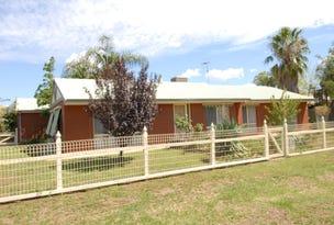 131 BUTLER STREET, Deniliquin, NSW 2710