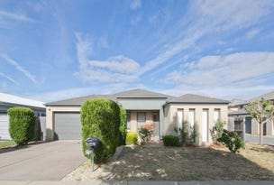 19 Careel Street, Harrison, ACT 2914