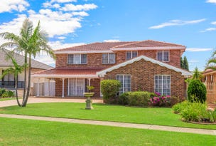 45 Kingfisher Avenue, Bossley Park, NSW 2176
