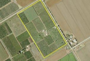 Farm 233 Ross Road, Yoogali, NSW 2680