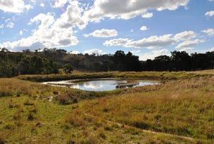 2095 Lower Piambong Road, Piambong, NSW 2850