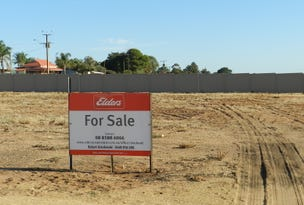 Lots 5 & 7 Gogel Road, Moorook, SA 5332