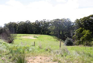 329 Upper Scotchtown Road, Scotchtown, Tas 7330