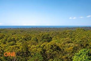 241 Godfrey Hill Road, Rainbow Flat, NSW 2430