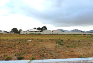 Lot 228 Thistle Avenue, Castletown, WA 6450