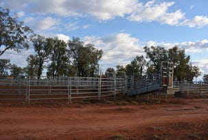 TIPPENDALE Balonne Highway, Bollon, Qld 4488