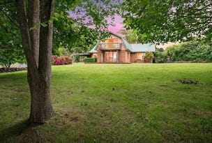 297 Preolenna Road, Flowerdale, Tas 7325
