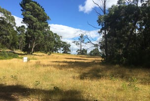 Lots 6 & 7 Cloudy Bay Road, Lunawanna, Tas 7150