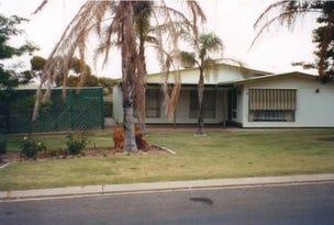 40 Riverview Drive, Paringa, SA 5340
