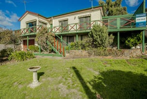 12 Ringarooma Road, Scottsdale, Tas 7260