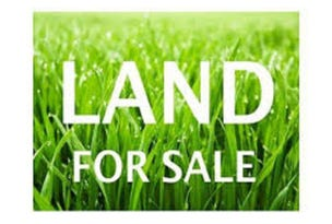 Lot 4 Fiddlewood Drive, Freeling, SA 5372