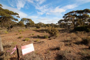 Lot 2 Lake Short Road, Sandleton, SA 5356