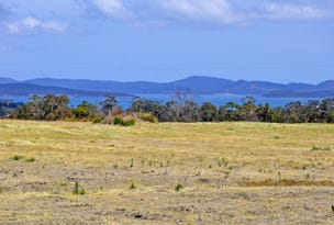 Lot 1 Josephs Road, Carlton River, Tas 7173