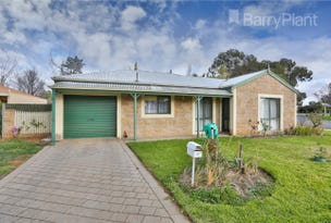 1/22 Wilkie Drive, Irymple, Vic 3498