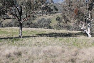 7 Warrah Park Lane, Willow Tree, NSW 2339