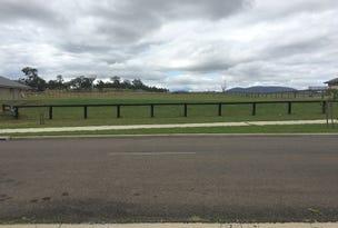 110 (Lot 209) Ironbark Road, Muswellbrook, NSW 2333