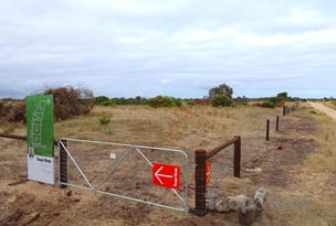 Lot 91 Southern Ports Highway, Robe, SA 5276