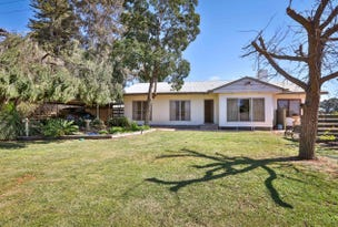 601 Irymple Avenue, Irymple, Vic 3498