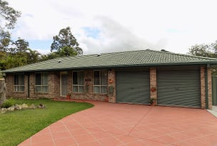 19 Ringtail Close, Lakewood, NSW 2443