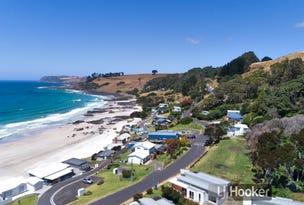 17/263 Port Road, Boat Harbour Beach, Tas 7321