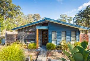 1 Ochre Lane, Millingandi, NSW 2549