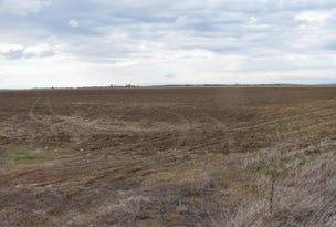 Farm 919A Irrigation Way, Whitton, NSW 2705