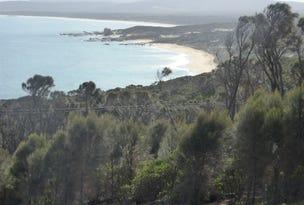 PID 1504921 Port Davies Road, Emita, Flinders Island, Tas 7255