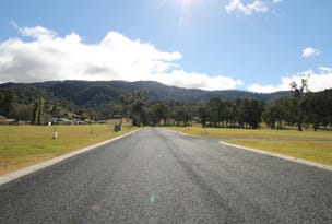Lot 1, Little Street, Murrurundi, NSW 2338