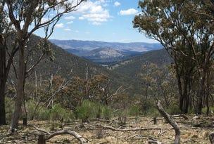 LOT 517 Wells Access Road, Wattle Flat, NSW 2795
