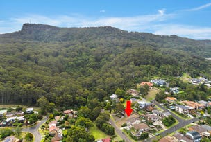 40 Coxs Avenue, Corrimal, NSW 2518