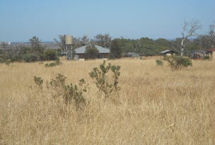 L176 Muster Drive, Napperby, SA 5540